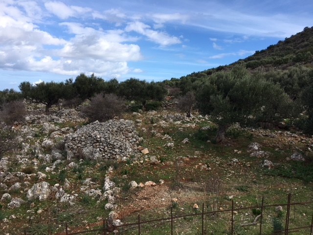 Land for sale in Kokkino Chorio Apokoronas Chania Crete with mountain view