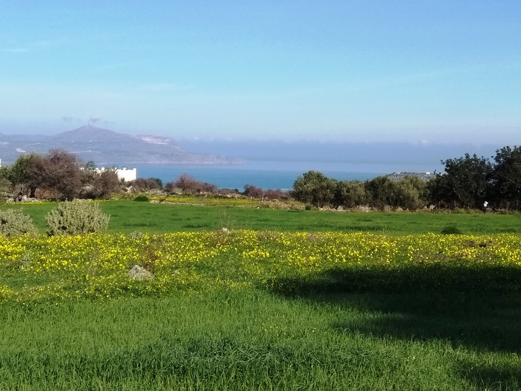 Amazing land in Vamos with sea views