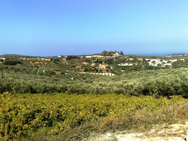 Hilltop plot with great views
