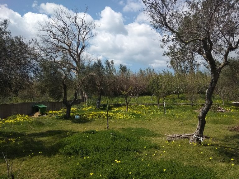 Villas for sale with private pools in Kolymbari Crete playground