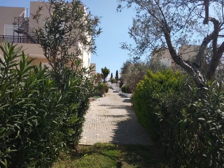 Villas for sale with private pools in Kolymbari Crete green allley