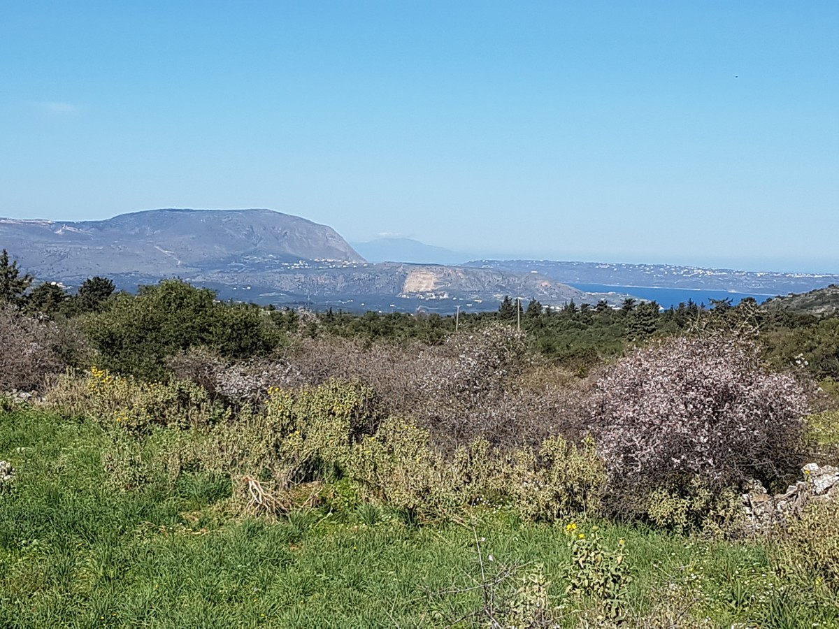 Plot of land for sale in Apokoronas Chania Crete with sea views