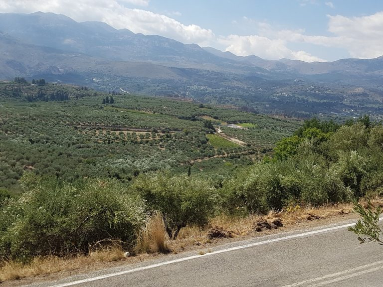 Plot of land for sale in Chania Crete access be an asphalt road