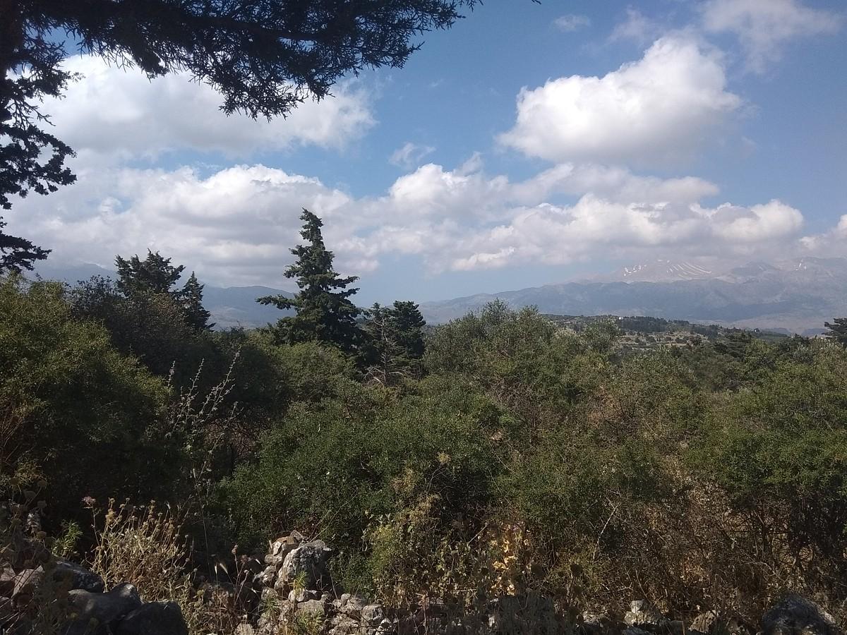 Land in Kefalas Apokoronas Chania Crete for sale