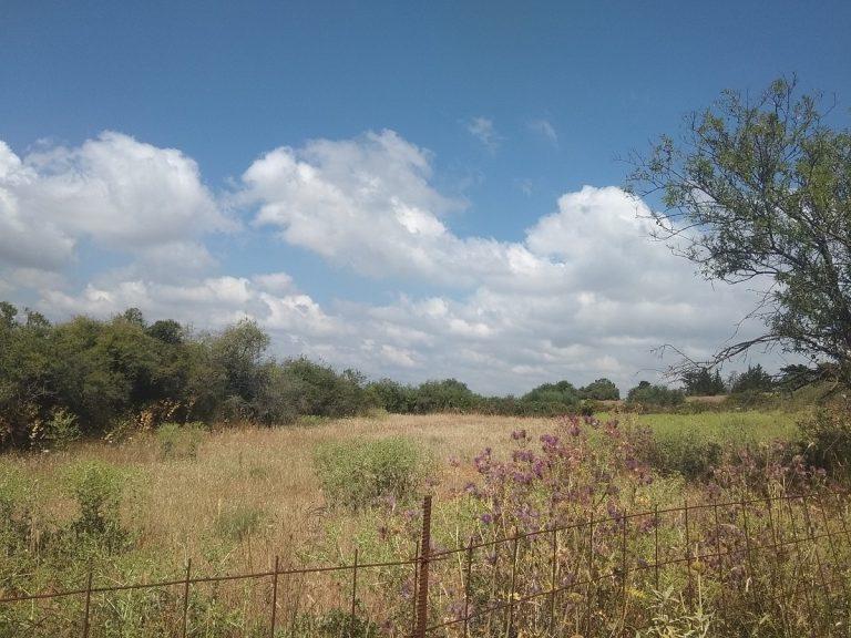 Plot of land in Apokoronas Chania Crete for sale countryside