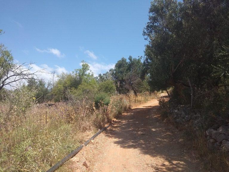 Plot of land in Apokoronas Chania Crete for sale access