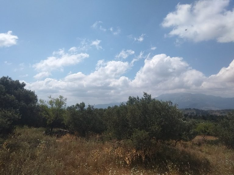 Plot of land in Apokoronas Chania Crete for sale0015