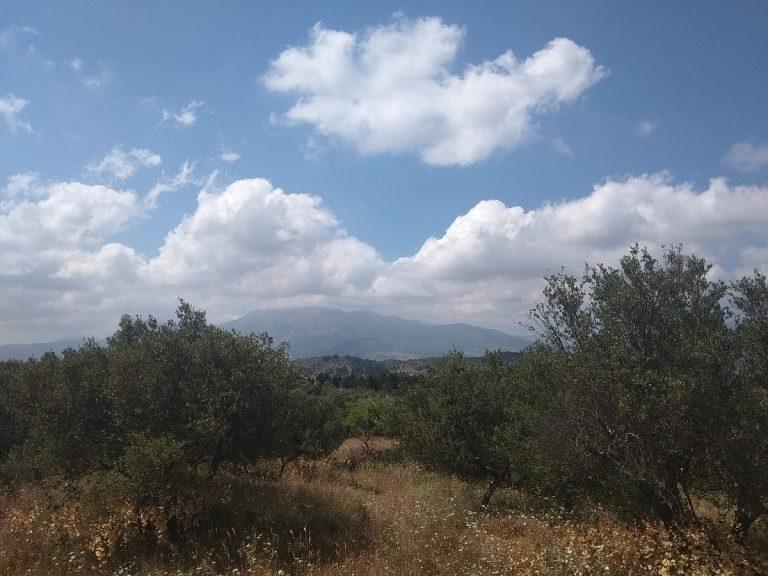 Plot of land in Apokoronas Chania Crete for sale-valley-views