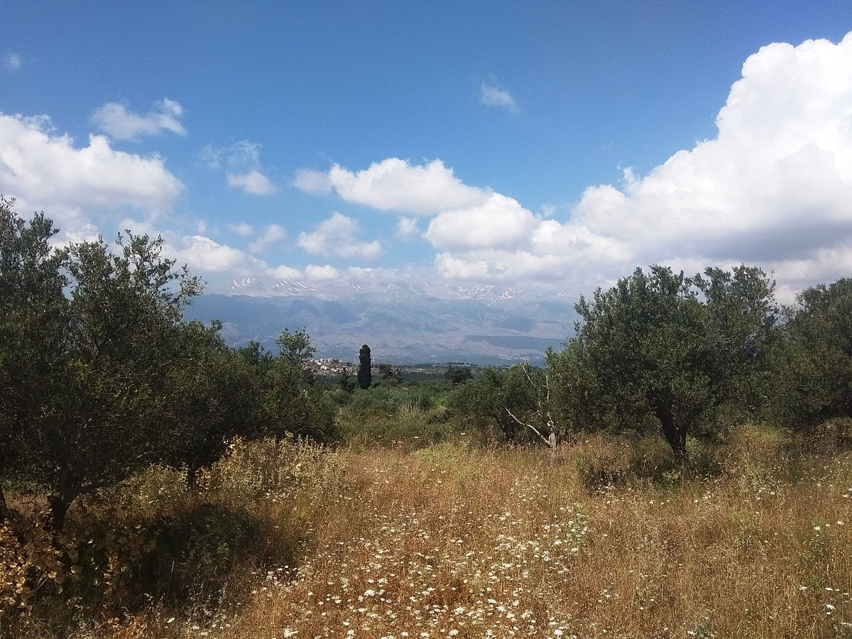 Plot of land in Apokoronas Chania Crete for sale mountains