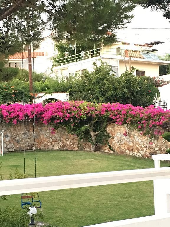 guesthouse for sale in apokoronas chania crete garden detail kh113