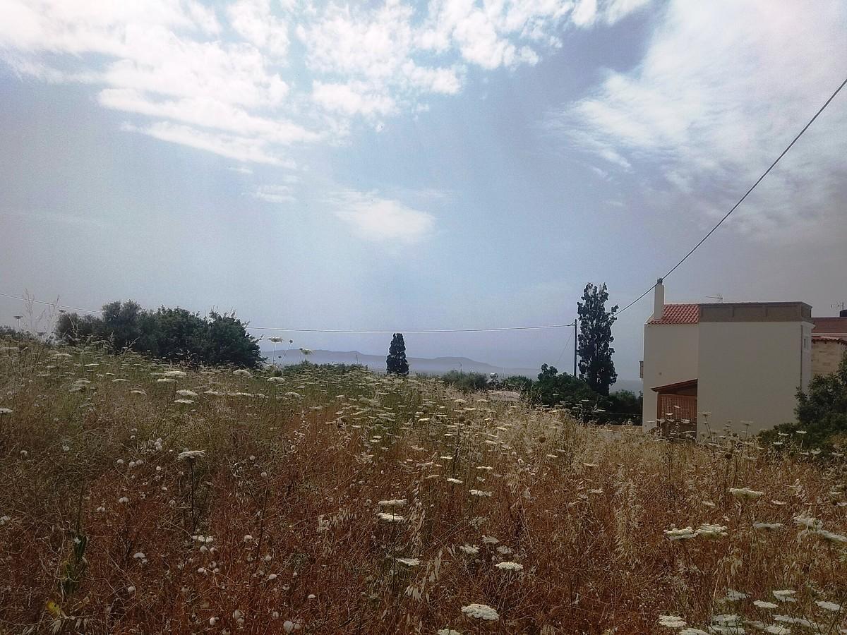 Plot of land in Akrotiri Chania Crete for sale al246