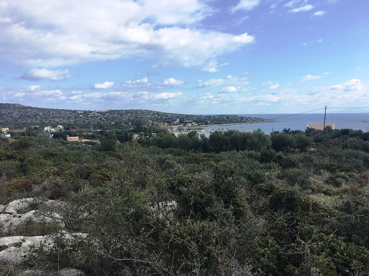 land for sale in akrotiri chania