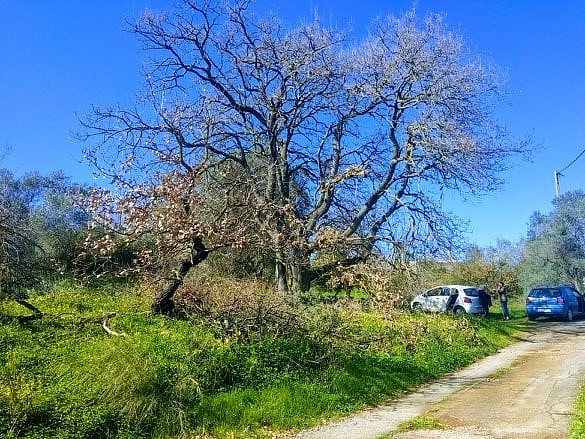 Plot of land for sale in Chania Crete access road CL077