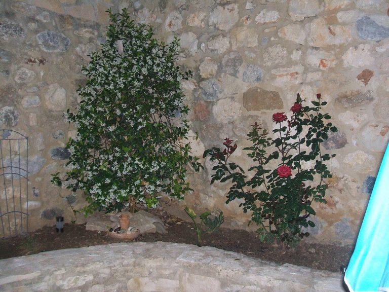 Stone house for sale in Rethymnon Crete yard detail RH015