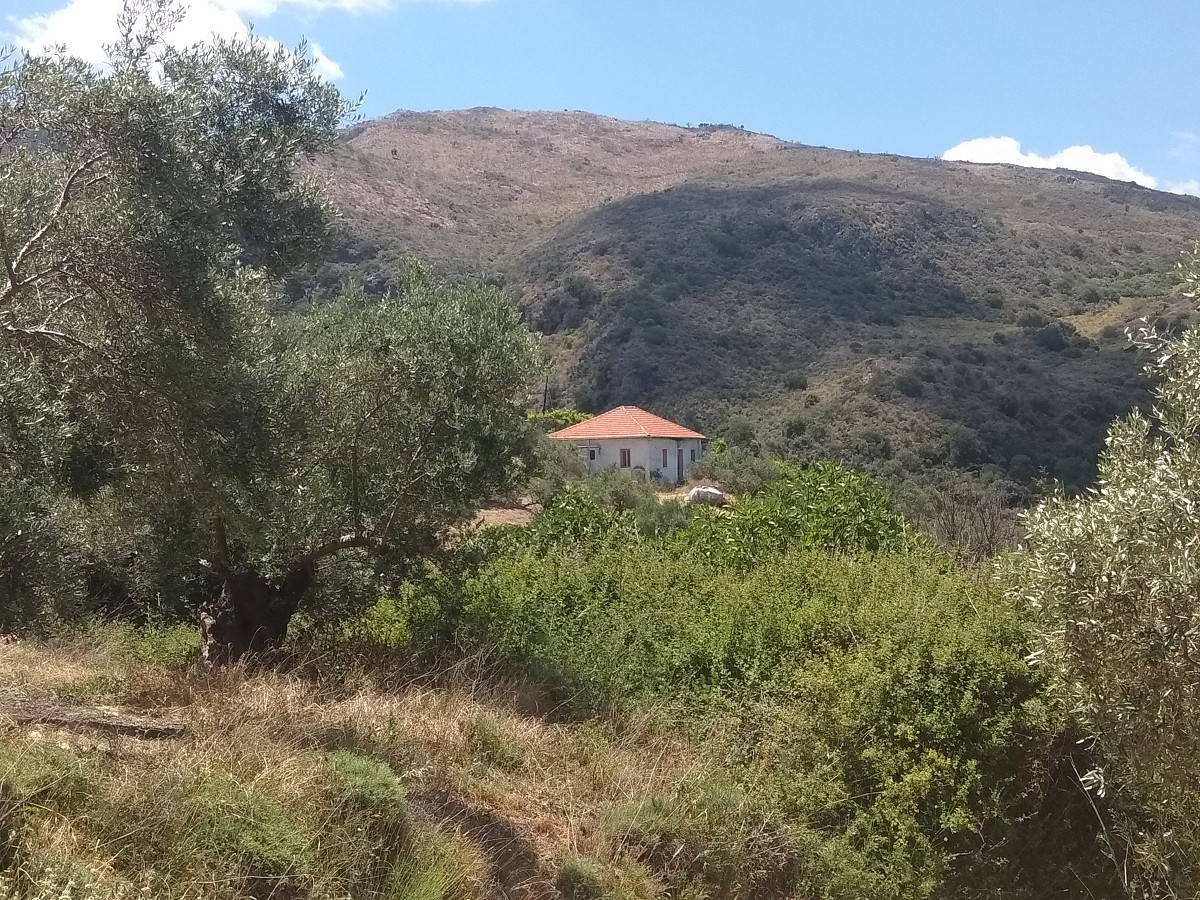Plot of land in Deliana Chania Crete CL063