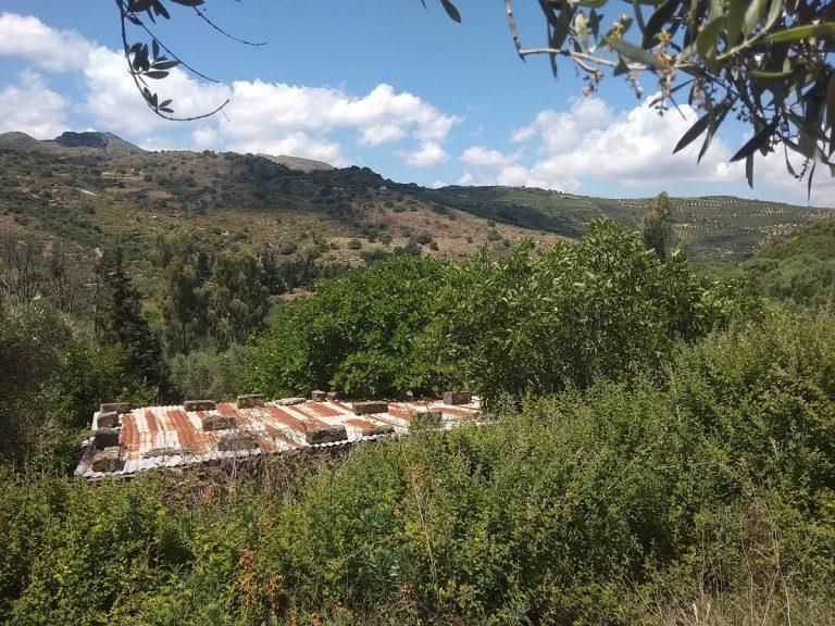 Plot of land in Deliana Chania Crete CL080