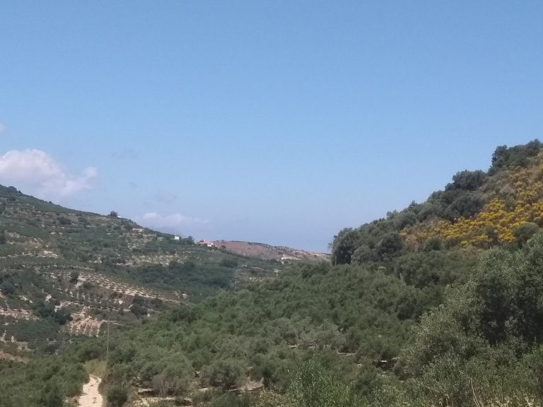 Plot of land in Deliana Chania Crete