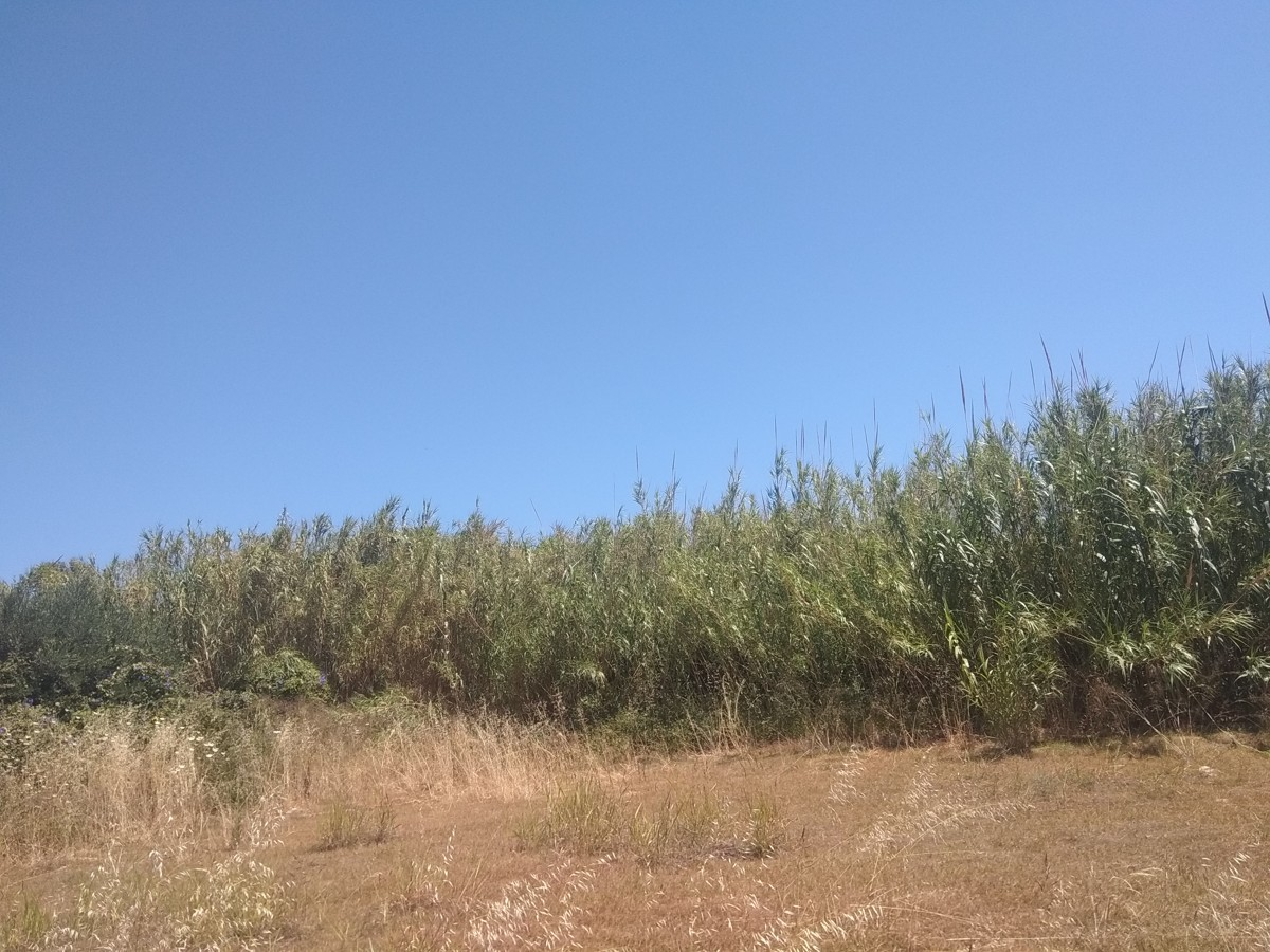 Plot for sale in maleme platanias chania cl088