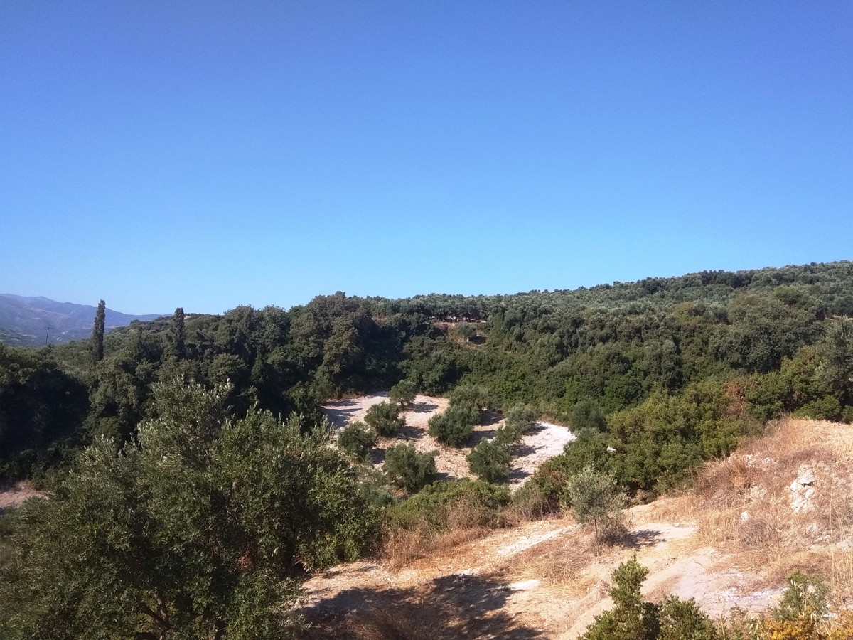 Plots for sale in polemarchi platanias chania cl085 mountain view