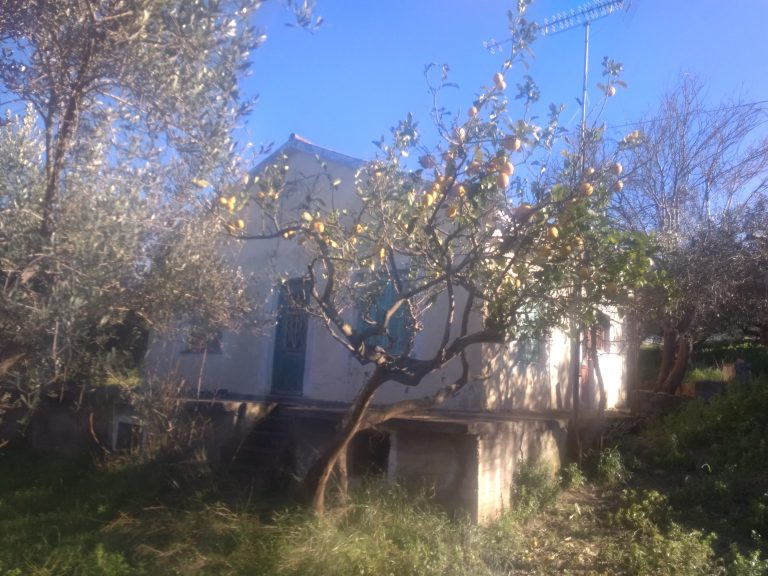 house for renovation for sale in kolymbari chania ch133 trees and home