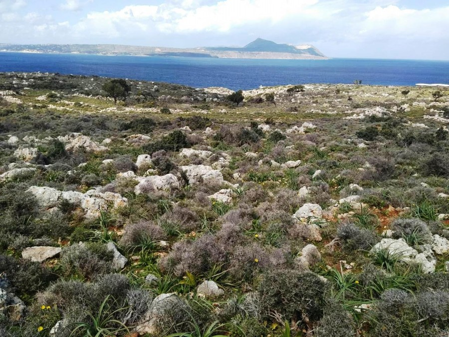 land for sale in kokkino chorio kl447